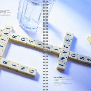 Výročná správa pre spoločnosť CI HOLDING, PDSI, CAPITAL INVEST 2005 a 2006 klient: Grafické štúdio September