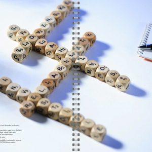 Výročná správa pre spoločnosť CI HOLDING, PDSI, CAPITAL INVEST 2005 a 2006 | klient: Grafické štúdio September